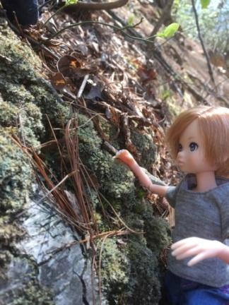 Cooper Climbing 01 ruruko
